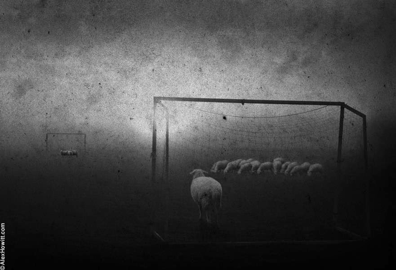 фотографии Алекса Хоуита