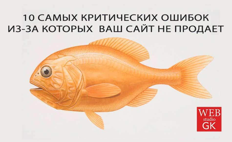 Успешный сайт Хмельницкий