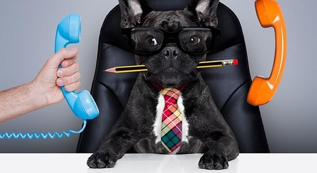 Как продать по телефону: сценарий или импровизация?